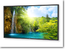 NEC's 52-inch P521 Professional LCD display