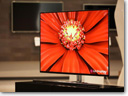 LG develops world's largest OLED TV panel