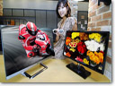 LG to show new line of IPS monitors at CES 2012