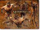 Update to Morrowind brings game to todays standards