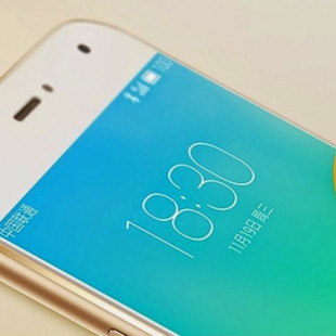 Meizu's MX6 smartphone will have two versions