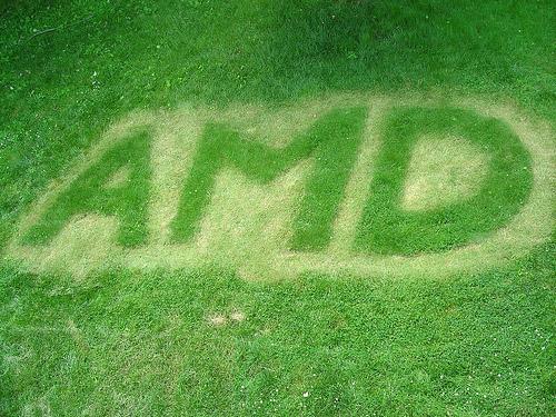 AMD40Anniversary