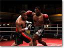 FightNight4-small