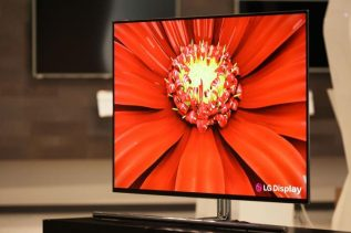 LG 55-inch OLED panel
