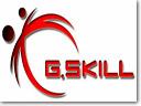 G.Skill Logo_small