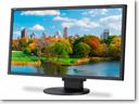 NEC EA223WM monitor_small
