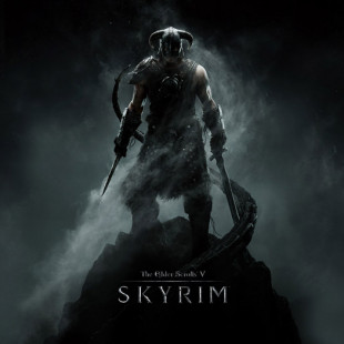 The Elder Scrolls V: Skyrim may get another DLC