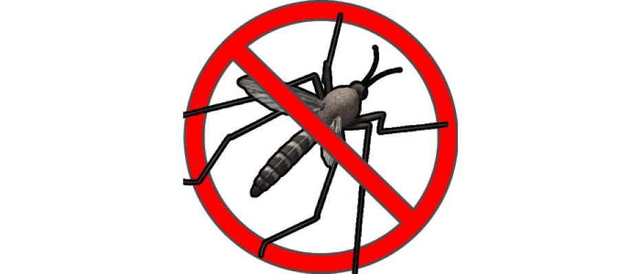Anti Mosquito Sound