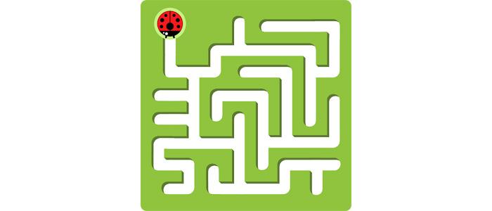 Maze-King_small