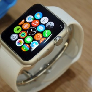 Apple Watch gets first software update